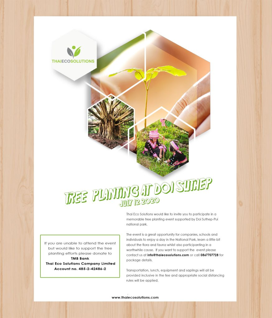 Tree Planting Project in Thailand